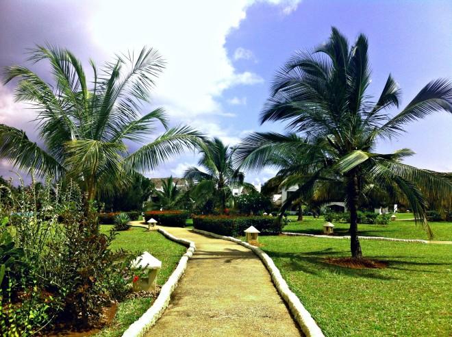 rzh-garden